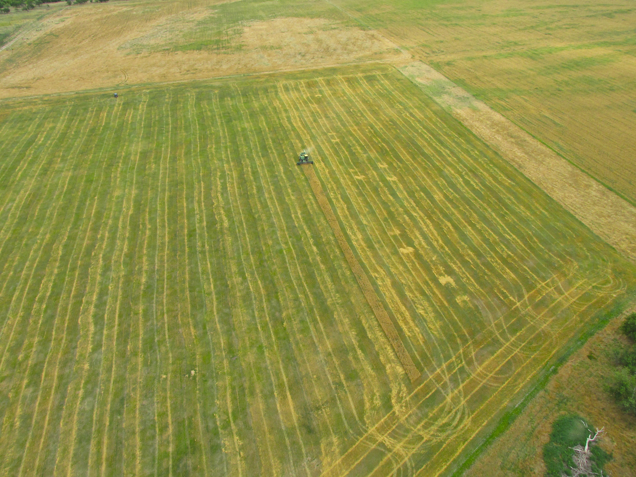 Airphoto - Aerial Photograph of Wheat Fields, Custer County ...